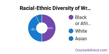 Racial-Ethnic Diversity of Writing Studies Majors at University of Baltimore