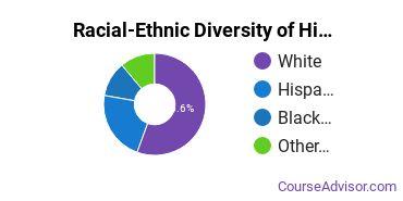 Racial-Ethnic Diversity of History Majors at University of Baltimore