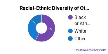 Racial-Ethnic Diversity of Other Visual Art Majors at University of Baltimore