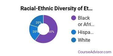 Racial-Ethnic Diversity of Ethnic Studies Majors at University of California - Santa Barbara