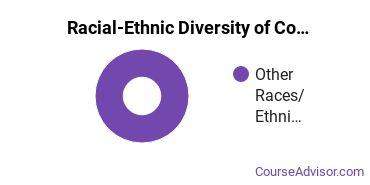Racial-Ethnic Diversity of Communication Sciences Majors at University of California - Santa Barbara