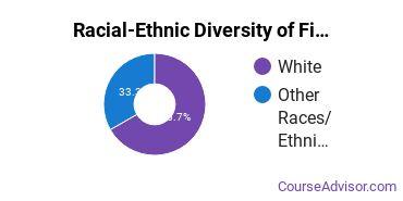 Racial-Ethnic Diversity of Fine & Studio Arts Majors at University of California - Santa Barbara