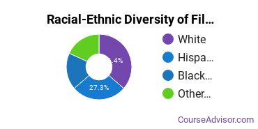 Racial-Ethnic Diversity of Film, Video & Photographic Arts Majors at University of Houston