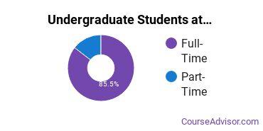 Full-Time vs. Part-Time Undergraduate Students at  UNCA