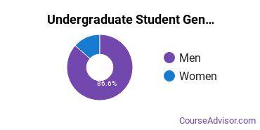 Undergraduate Student Gender Diversity at  University of Northwestern Ohio
