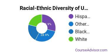 Racial-Ethnic Diversity of UOPX - Florida Undergraduate Students