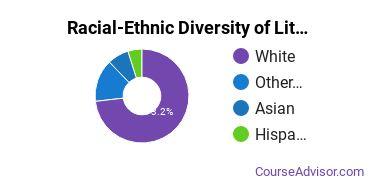 Racial-Ethnic Diversity of Literature Majors at University of Pittsburgh - Pittsburgh Campus