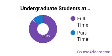 Full-Time vs. Part-Time Undergraduate Students at  University of Sioux Falls