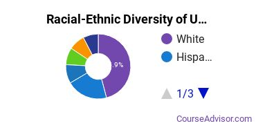 Racial-Ethnic Diversity of USF Tampa Undergraduate Students