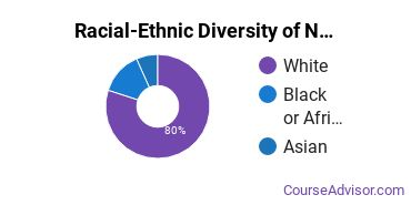 Racial-Ethnic Diversity of Nursing Majors at University of Washington - Tacoma Campus