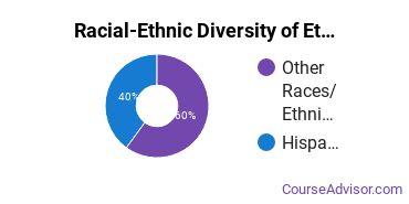 Racial-Ethnic Diversity of Ethnic Studies Majors at University of Wisconsin - Green Bay