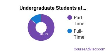 Full-Time vs. Part-Time Undergraduate Students at  WCCCD