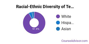 Racial-Ethnic Diversity of Teacher Education Subject Specific Majors at Wayne State College