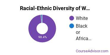 Racial-Ethnic Diversity of WVJC Bridgeport Undergraduate Students
