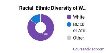 Racial-Ethnic Diversity of WVJC Charleston Undergraduate Students