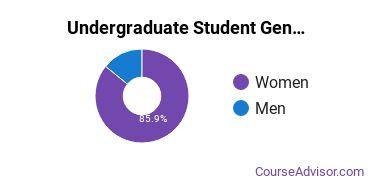 Undergraduate Student Gender Diversity at  WVJC Morgantown