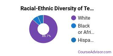Racial-Ethnic Diversity of Teacher Education Subject Specific Majors at Wilmington University