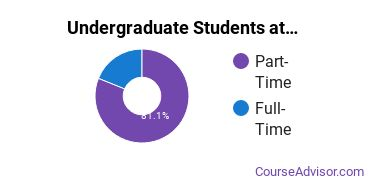 Full-Time vs. Part-Time Undergraduate Students at  Wiregrass Georgia Technical College