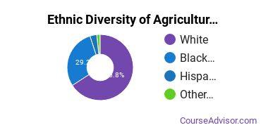 Agricultural Economics Majors in MS Ethnic Diversity Statistics