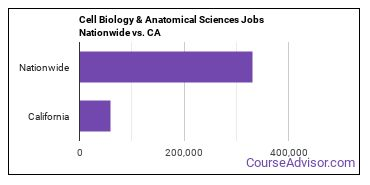 Cell Biology & Anatomical Sciences Jobs Nationwide vs. CA