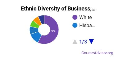 Business, Management & Marketing Majors Ethnic Diversity Statistics