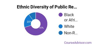 Public Relations & Advertising Majors in DE Ethnic Diversity Statistics