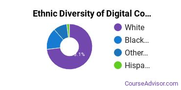 Radio, TV & Digital Communication Majors in TN Ethnic Diversity Statistics