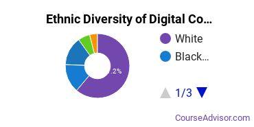 Radio, TV & Digital Communication Majors in VA Ethnic Diversity Statistics