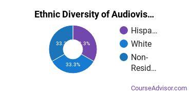 Audiovisual Communications Majors in NM Ethnic Diversity Statistics