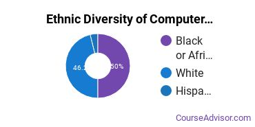 Computer Systems Analysis Majors in AR Ethnic Diversity Statistics