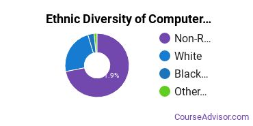Computer Systems Analysis Majors in NE Ethnic Diversity Statistics