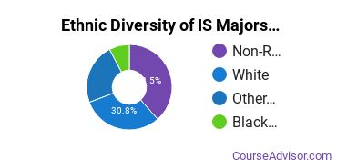 Information Science Majors in HI Ethnic Diversity Statistics