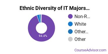 Information Technology Majors in KY Ethnic Diversity Statistics