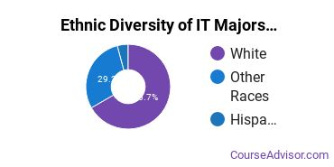 Information Technology Majors in WY Ethnic Diversity Statistics