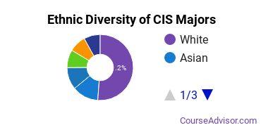 Computer Information Systems Majors Ethnic Diversity Statistics