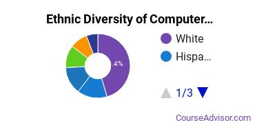 Computer Software Applications Majors Ethnic Diversity Statistics