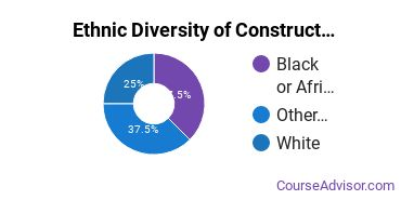 Construction Majors in MI Ethnic Diversity Statistics