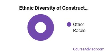 Construction Majors in ND Ethnic Diversity Statistics