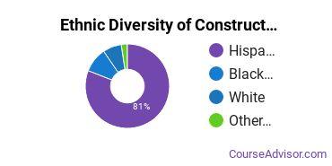 Construction Majors in TX Ethnic Diversity Statistics