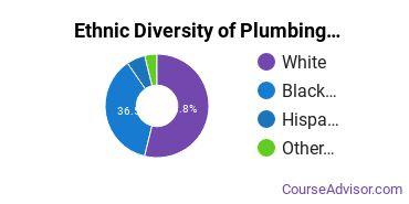 Plumbing & Water Supply Majors in GA Ethnic Diversity Statistics