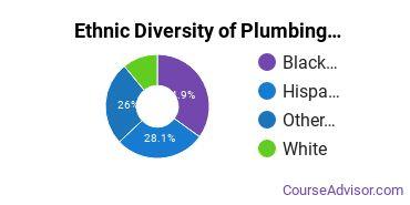 Plumbing & Water Supply Majors in NY Ethnic Diversity Statistics