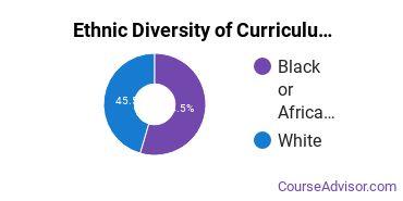 Curriculum & Instruction Majors in DE Ethnic Diversity Statistics