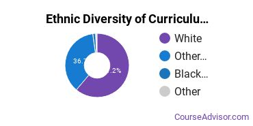 Curriculum & Instruction Majors in KY Ethnic Diversity Statistics