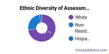Educational Assessment Majors in NE Ethnic Diversity Statistics