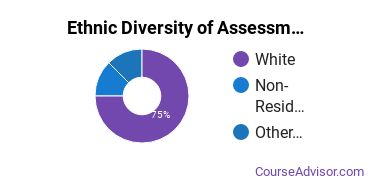 Educational Assessment Majors in VA Ethnic Diversity Statistics