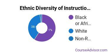 Instructional Media Design Majors in MS Ethnic Diversity Statistics