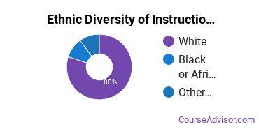 Instructional Media Design Majors in ND Ethnic Diversity Statistics