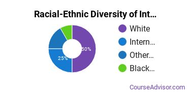 Racial-Ethnic Diversity of International Ed Doctor's Degree Students