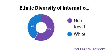 International Education Majors in TN Ethnic Diversity Statistics