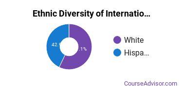 International Education Majors in TX Ethnic Diversity Statistics